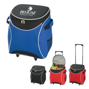 Promotional Picnic Coolers-3117 E