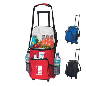 Promotional Picnic Coolers-3118 E