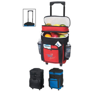 Promotional Picnic Coolers-3150 E