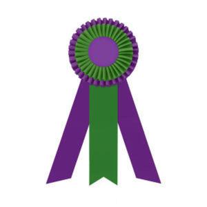 Promotional Award Ribbons-R2O-5123