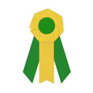 Promotional Award Ribbons-RFF-45103