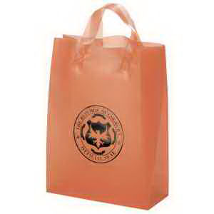 Promotional Tote Bags-37S1013H