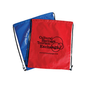 Promotional Shoe Bags-BG-400