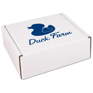 Promotional Containers-BX-507 BOX