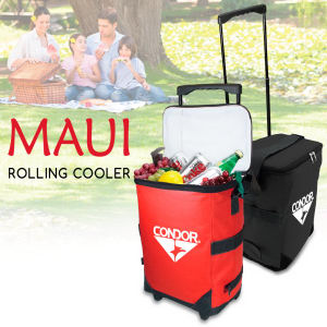 Promotional Picnic Coolers-RC122