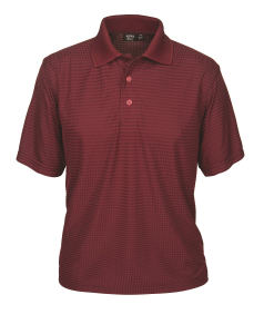 Promotional Polo shirts-1368-DNC