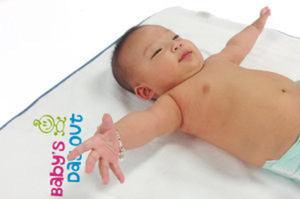 Promotional Blankets-VTWL30