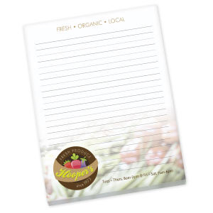 Promotional Jotters/Memo Pads-NS8I11A25