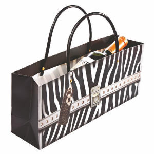 Promotional Picnic Coolers-6332