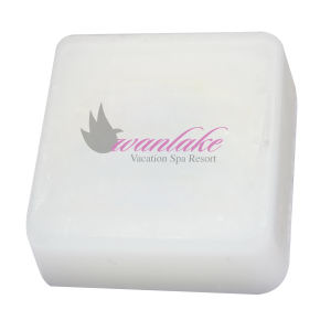 Promotional Soap-9301