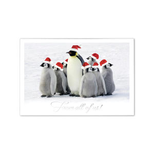 Promotional Greeting Cards-XHM1506