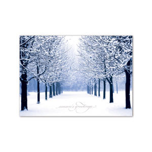 Promotional Greeting Cards-XHC1158