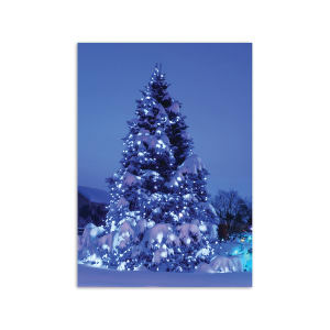 Promotional Greeting Cards-XH8756FC