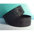 Promotional Wristbands-P8-10DWD1C