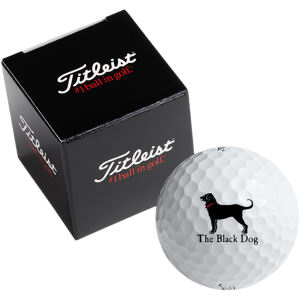 Promotional Golf Balls-T1BBDTT-FD