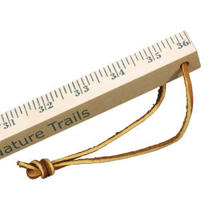 Promotional Rulers/Yardsticks, Measuring-90700