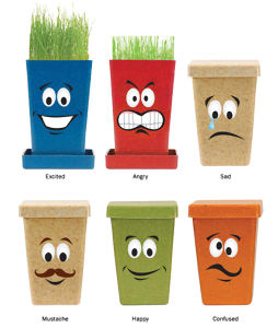 Expression - Planter with