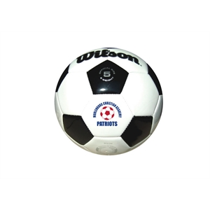 Promotional Soccer Balls-WLSOC