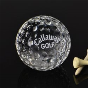 Promotional Paperweights-ICG019