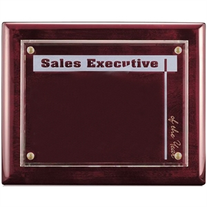 Promotional Plaques-AWP222