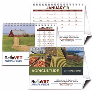 Promotional Desk Calendars-4242