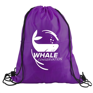 Promotional Backpacks-DS1316