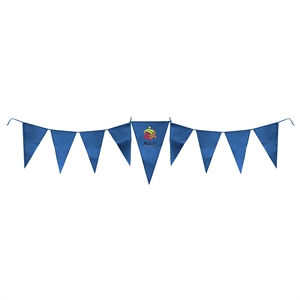 Promotional Banners/Pennants-COUT009