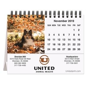 Promotional Desk Calendars-TC121