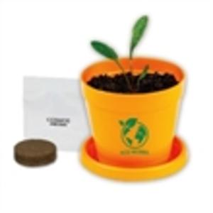 Promotional Garden Accessories-410700