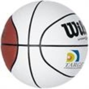 Promotional Basketballs-WAMB-FD