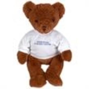Promotional Stuffed Toys-13713AF
