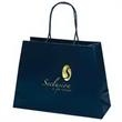 Promotional Shopping Bags-34MT1612