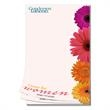 Promotional Memo Holders-NTP0250MFC