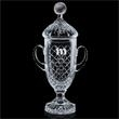 Promotional Trophies-AWARD TPY662