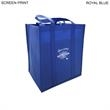 Promotional Bags Miscellaneous-BL596