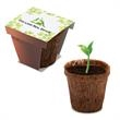 Promotional Seeds, Trees and Plants-410635