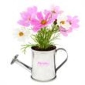 Promotional Garden Accessories-410650