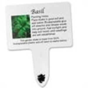 Promotional Plants-341455