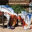 Promotional Blankets-DP1744