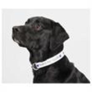 Promotional Pet Accessories-SM-8058