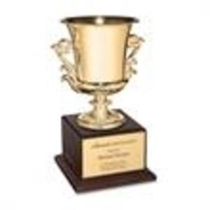 Promotional Awards Miscellaneous-AWARD 8336.19