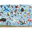 Promotional Puzzles-4934