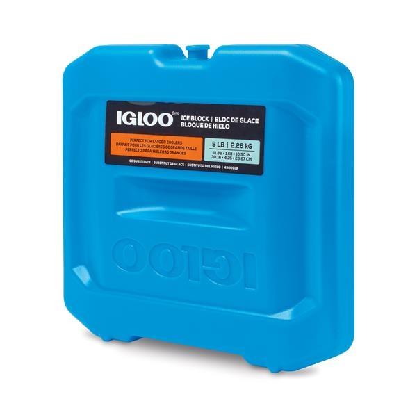 Igloo - 12