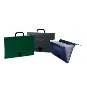 Promotional Holders-Organizer-L2