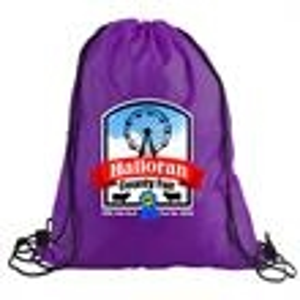 Promotional Backpacks-DPDS1316