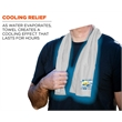 Promotional Cooling Towels-SU704