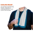 Promotional Cooling Towels-704