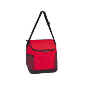 Promotional Picnic Coolers-Cooler-B222