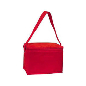 Promotional Picnic Coolers-Cooler-B226