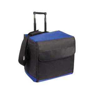 Promotional Picnic Coolers-Cooler-B442